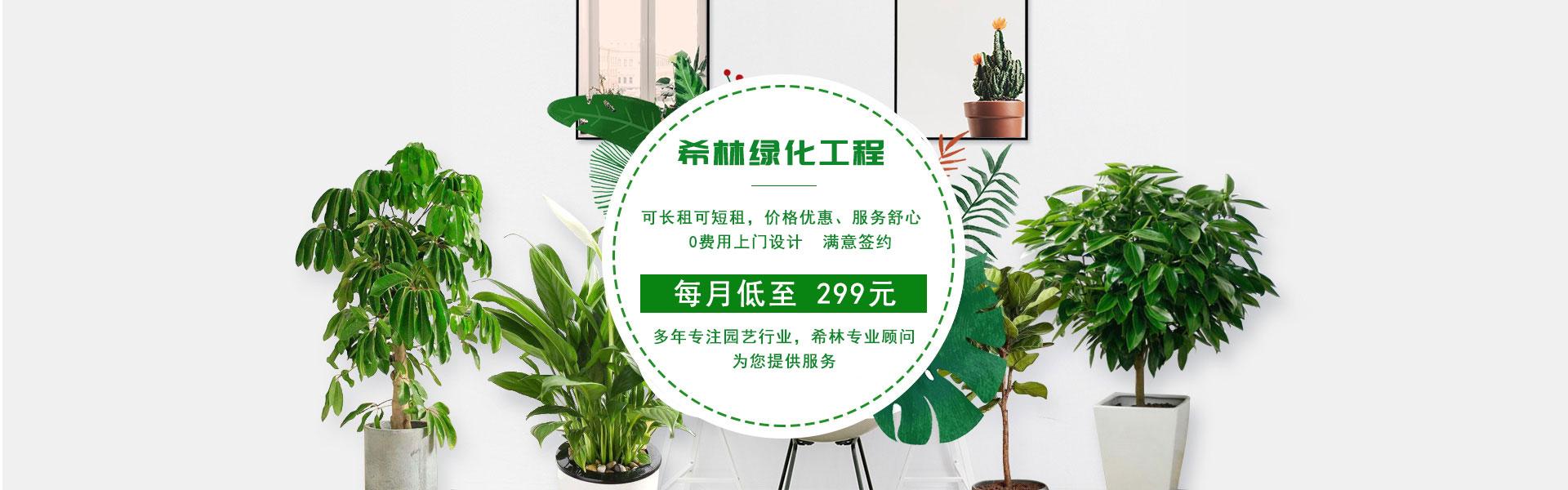 无锡绿化养护